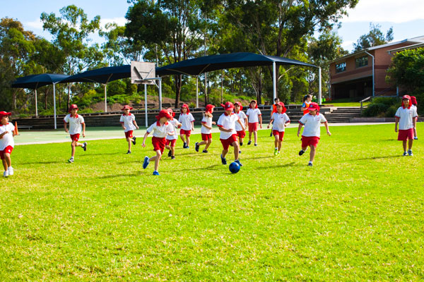 Group of students in sport uniform playing soccer in green field